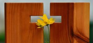 chwalebny Krzyż